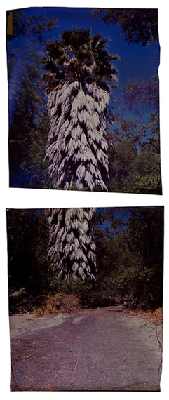 John Chiara: Verenda de la Montura at Camino (diptych), 2012, Los Angeles series