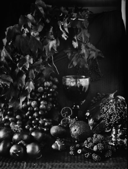 © Ingrid von Kruse: Natura Morte, Camera Oscura