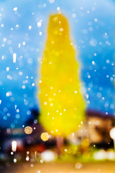 © Yoshinori Mizutani, Rain, 2015/ courtesy of Webber Gallery Space + IMA gallery.