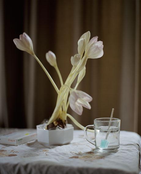 Hanne van der Woude: Flowers for Ben, 2009-2015C-print, 120 x 96 cm, Ed. 2/5© Hanne van der Woude / Van der Mieden Gallery