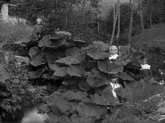 Four Children in Leafs, Bleniotal© Fondazione Archivio Fotografico Roberto Donetta, Corzoneso
