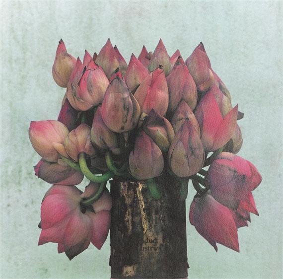 John Stewart: Pink Lotus, Sri Lanka, 1997, Pigment Print