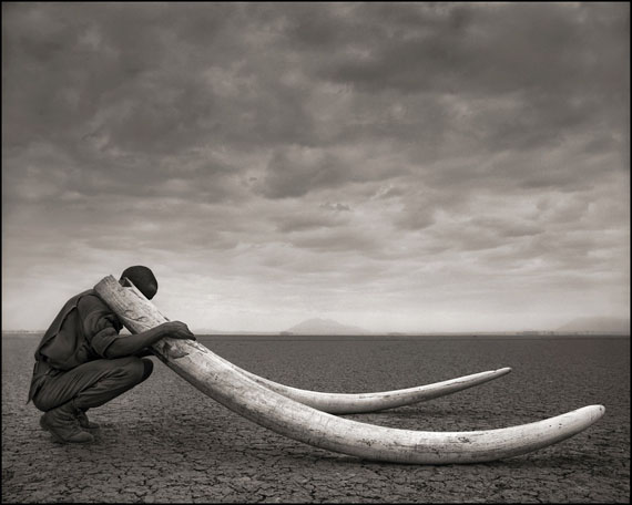 Ranger with Tusks of Killed Elephant, Amboseli 2011 © Nick Brandt