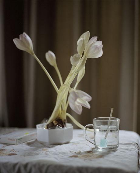 Flowers for BenDodewaard, 2013© Hanne van der Woude