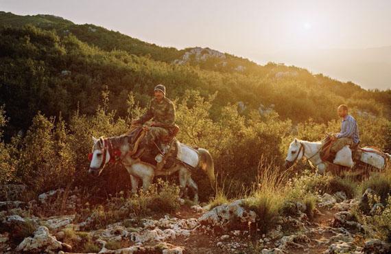 Fatih Kurceren: Zwei Männer auf Pferden suchen Lorbeerblätter auf dem Musa Dagh