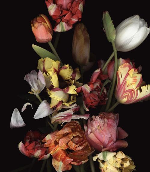 Luzia Simons (BRA)Stockage 97, 2014Scannogramm, pigmentjet on handmade paper160 x 140 cm, Edition of 6 + 2AP