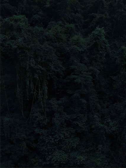 Shan Feiming