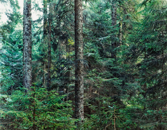 Thomas Struth