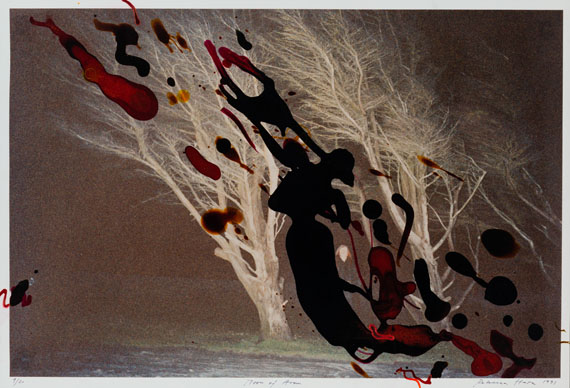 Los 36Rebecca HornMoon of Aran 1993C-Print, edition 9/2070,5 x 100,5 cmstarting price/Rufpreis: € 4.000