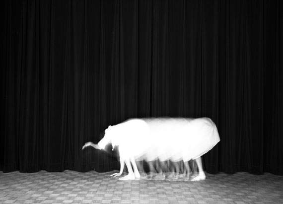 Guillaume Martial, L'éléphant, from series Animalocomotion, 2015