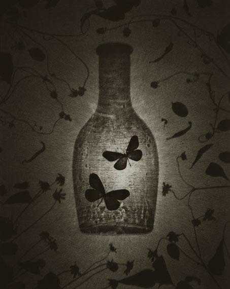 Ryuji Taira: Two Butterflies, 2008