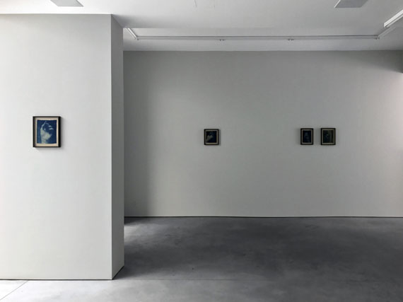 "Adam Jeppesen Installation view ""The Pond"""