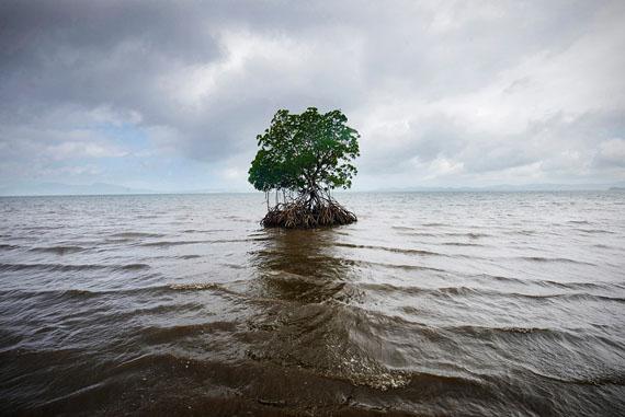 © Kadir van Lohuizen/NOOR, from the series Sea-level rise in Fiji.