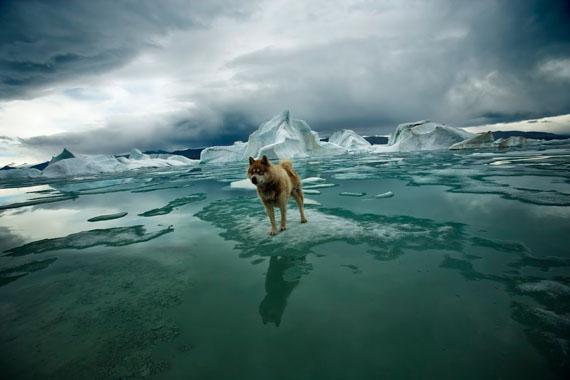 Sebastian Copeland. Zephir. Canadian Arctic, 2008
