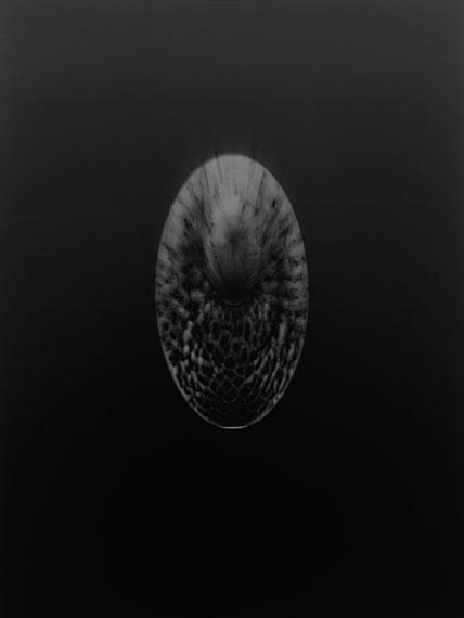 Gerda Schütte, Souvenirs d'Afrique-20172017, 40,5 x 30 cm, Fotogrammcourtesy Semjon Contemporary