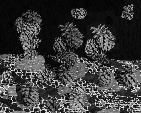 Nico Krijno: Pattern Study with Pine Cones, 2017Print size: 104 x 118,8 cm / framed 104 x 118,8 cmInkjet print on photorag paper, Amazakoë wood frame with optiwhite glassEdition of 3