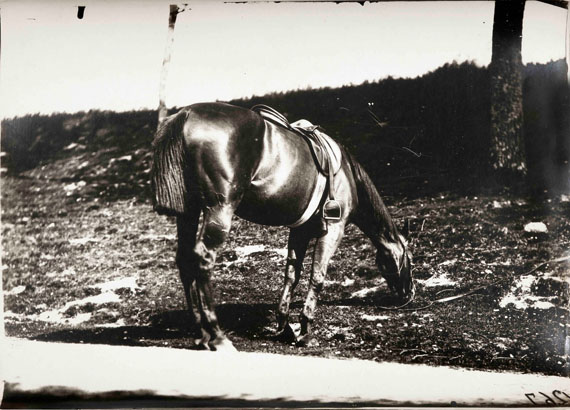 120.