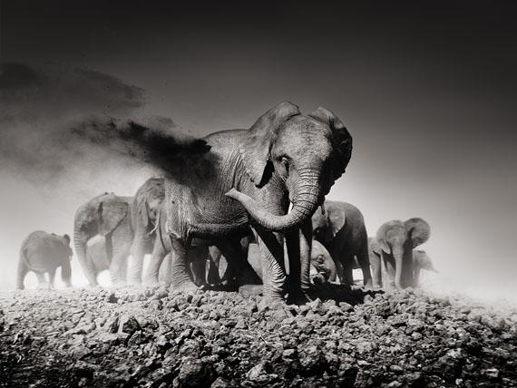 "Joachim Schmeisser: ""Earth I"" Kenya 2013"
