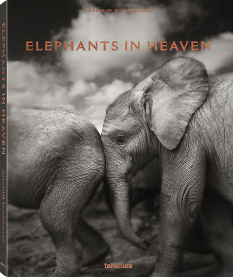 Joachim Schmeisser: Elephants in HeavenHC 27,5 x 34 cm, 176 Seiten, 15 Farb- und 93 Schwarz-Weiß-FotografienText: Deutsch, Englisch und FranzösischISBN: 978-3-96171-047-859,90 €teNeues Verlag