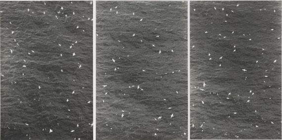Untitled (Schwarm über Meer II), 20063 Fotografien Silbergelatine Baryt, je 48,3 x 32,2 cmSammlung Niedersächsische Sparkassenstiftung im Sprengel Museum Hannover© Jochen Lempert/VG Bild-Kunst, Bonn 2017
