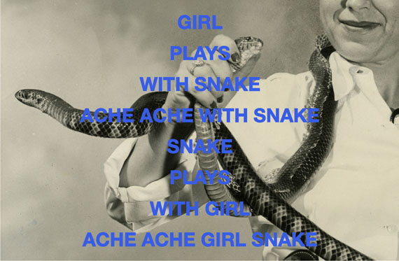 "Clare Strand: ""Snake"" 2016, 101,6 cm x 152,4 cm, Archival Photographs on Giclee Hahnemühle Photo Rag 308gsm matt, Text im Siebdruck