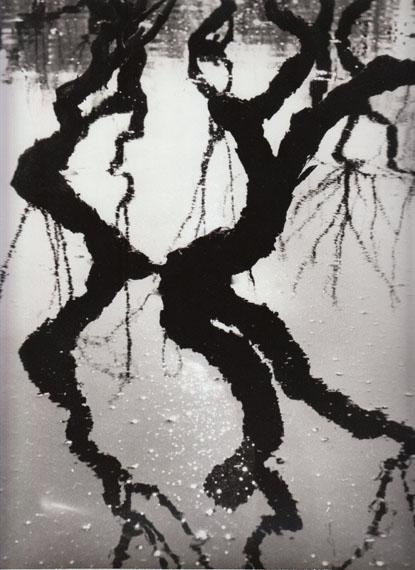Lucien Clergue, Vignes inondées, Arles, 1960