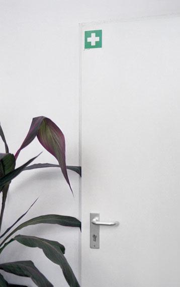 "Zani Arkadina: Botanischer Garten, aus der Serie ""Urban Still Life"", 2015 © Zani Arkadina"