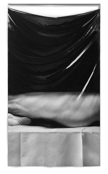 FREUDENTHAL / VERHAGENLeg and Sole, 2018Print: Pigment print on silk, silicone rubber, anodised aluminiumImage Size: 92 x 180 x 3 cmEdition: 3