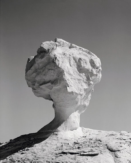 Darren Harvey-Regan