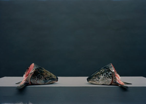 Olivier Richon: Heads, 2013, C Type analogue, 60 cm x 42cm, Edition 3/5