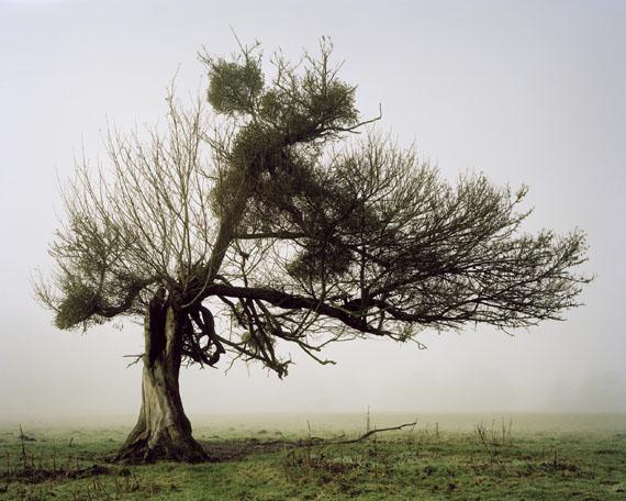 "aus ""Gastland Frankreich"" © Alain Cornu"