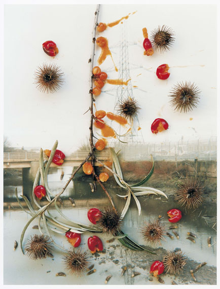 Stephen Gill, aus der Serie Hackney Wick, 2005, C-Print on Crystal Archive Paper© Stephen Gill / Courtesy Christophe Guye Galerie, Zürich