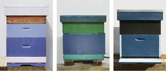 Beehives, Lilac & Wood, Beehives, Blue & Green and Beehives, Blue & Black, 2017