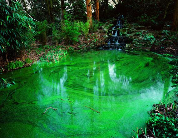Untitled 2, Green pond, C-print, 100x125cm, 2004 © PARK Hyung-Geun