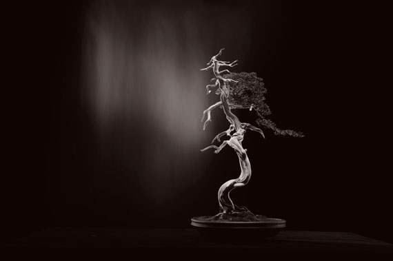 Yamamoto MasaoBonsai Microcosm Macrocosm (1)28 x 35 cm2018silver gelatine print© Yamamoto Masao