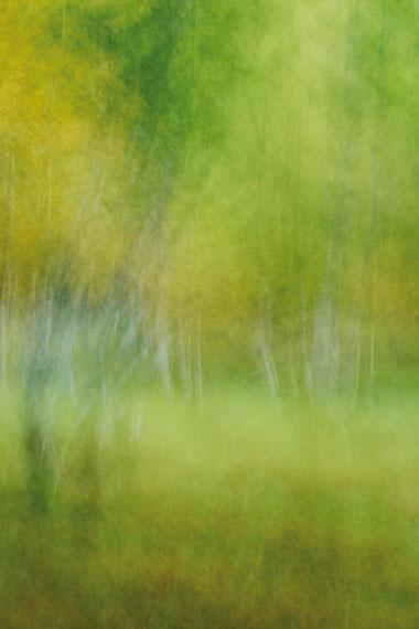 © Hiroshi Aoki