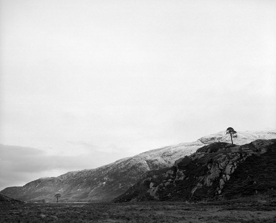 Two granny pines, Scotland, February, 2017  from the series Borealis,                                                     © Jeroen Toirkens/Kahmann Gallery