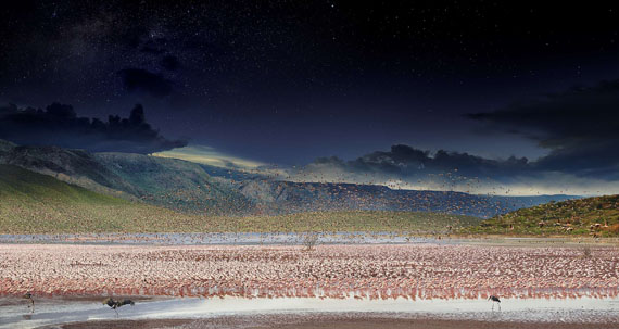 Stephen Wilkes (1951)