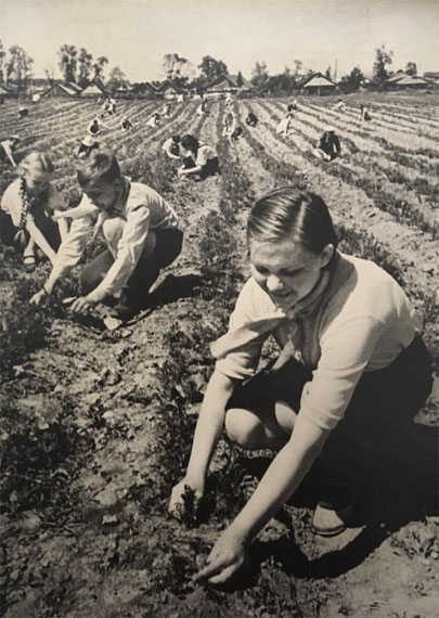 MIKHAIL GRACHEV