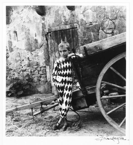 Lot 564