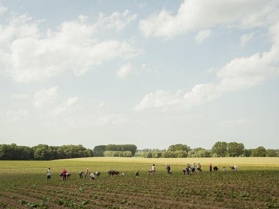 """Peter Bialobrzeski, bei Wismar, 2012, aus der Serie """"Die zweite Heimat"""""""