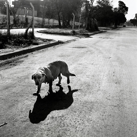 """Alfredo SrurUntitled, from the series """"Zona Sur""""23.6 x 30.1Gelatin silver print"""