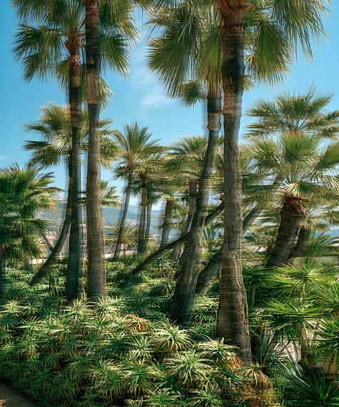 RALF BRUECK, Souvenir Monte Carlo, 2019Courtesy Kunst & Denker Contemporary