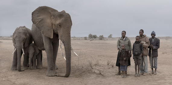 NICK BRANDT
