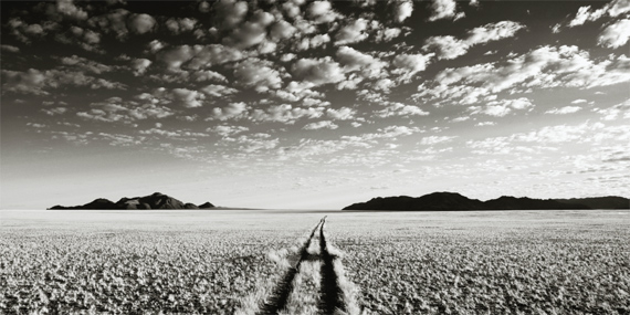 CHRIS SIMPSON Wolwedans Namibia VII, 2007