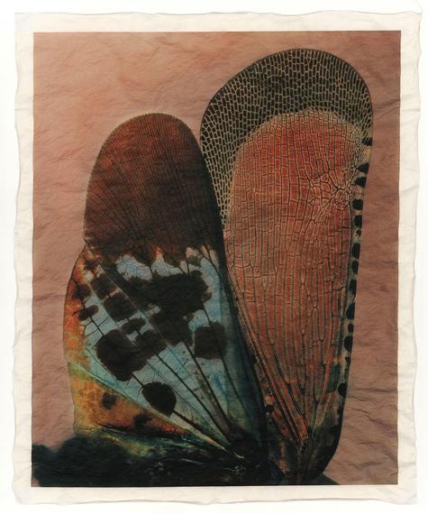 """Gregor Törzs """"à la couleur – Wing Wing 11"""" 2019, Archival-Pigment-Print auf Gampi-Papier© and courtesy Persiehl & Heine, Galerie für Fotografie"""