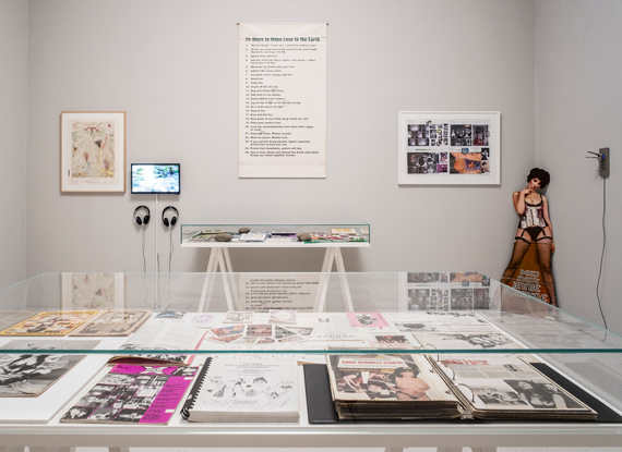 Annie Sprinkle and Beth Stephens, sculptures, photographs, videos, magazines, ephemera, and archival materials, 1973–2017, installation view, Neue Galerie, Kassel, documenta 14, photo: Mathias Völzke