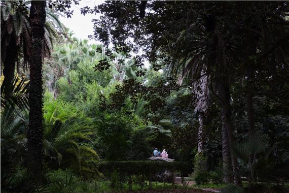 Yoneda TomokoLovers - Botanical Garden of Hamma, Algiers2017, Chromogenic print55.3×83 cm