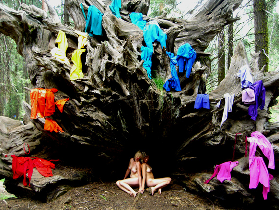 A.L. STEINER, UNTITLED, RAINBOW ROOTS, DIGITAL PHOTOGRAPH, DE/FROM: C.L.U.E. (COLOR LOCATION ULTIMATE EXPERIENCE), DIGITAL VIDEO, ROBBINSCHILDS + A.L. STEINER, 2007, COURTESY THE ARTISTS + DEBORAH SCHAMONI GALERIE