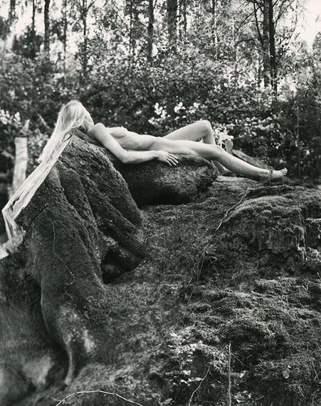 Vincent Lifer: Roots Of Life I., 2019